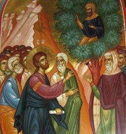 Αποτέλεσμα εικόνας για Ὁ Ἅγιος Ζακχαῖος ὁἈπόστολος